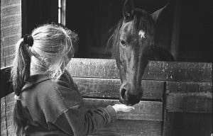Patti loving on her horse Ted at the barn